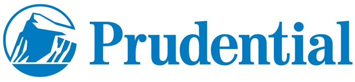 world first logo